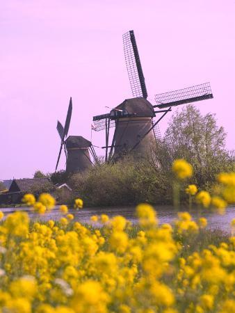 keren-su-windmills-along-the-canal-in-kinderdijk-netherlands
