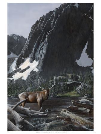 kevin-daniel-mountainside-elk-i