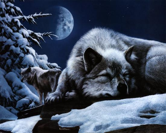 kevin-daniel-sleeping-wolf-and-lookout