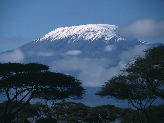 kilimanjaro-and-acacia-trees