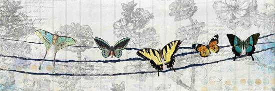 kimberly-allen-butterfly-day