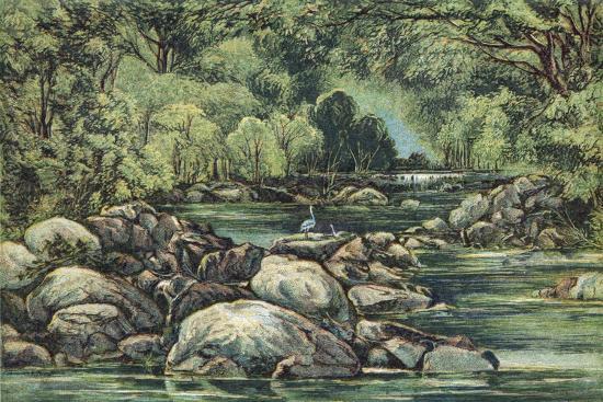 king-s-college-river-in-tasmania-19th-century