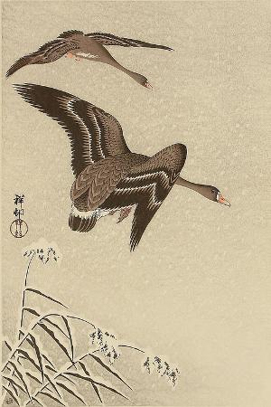koson-ohara-geese-in-snow-falling-sky