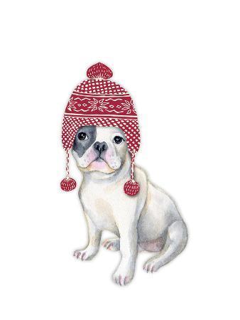 kristin-van-handel-dog-in-red-winter-hat