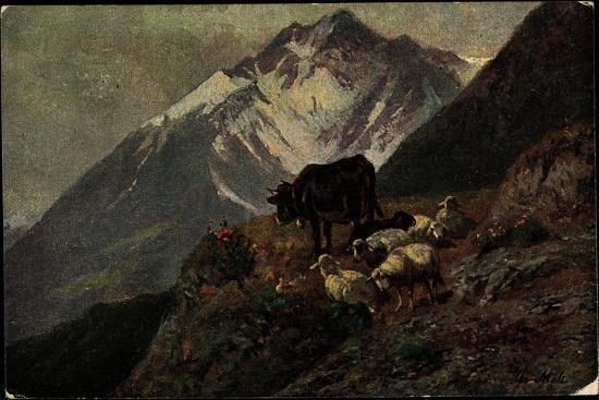 kuenstler-christian-mali-hochgebirge-kuh-laemmer-abhang