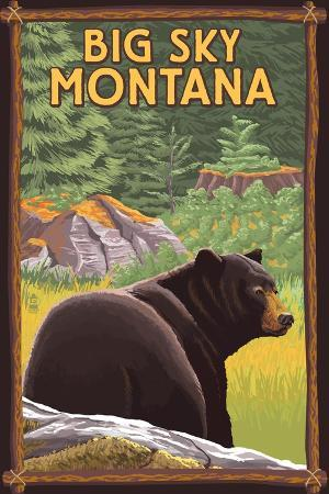 lantern-press-big-sky-montana-bear-in-forest