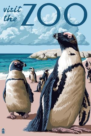lantern-press-black-footed-penguins-visit-the-zoo