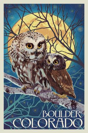 lantern-press-boulder-colorado-owl-and-owlet