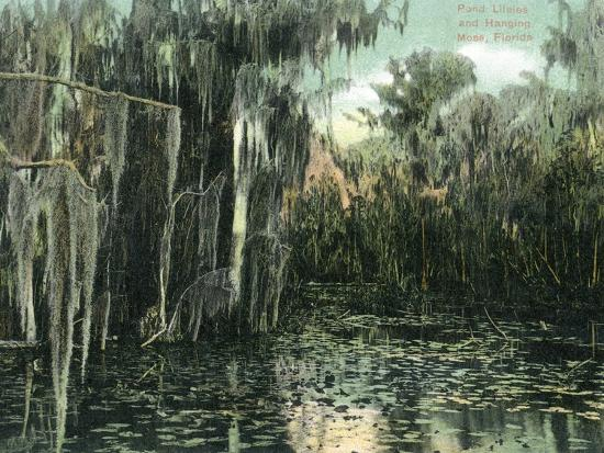 lantern-press-florida-view-of-pond-lilies-and-hanging-moss