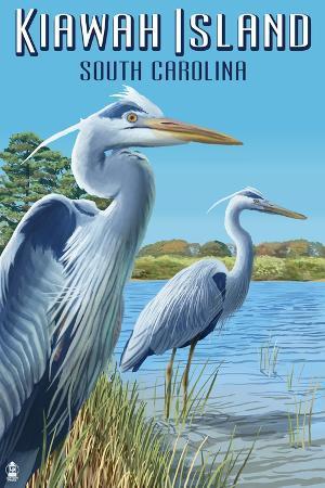 lantern-press-kiawah-island-south-carolina-blue-herons