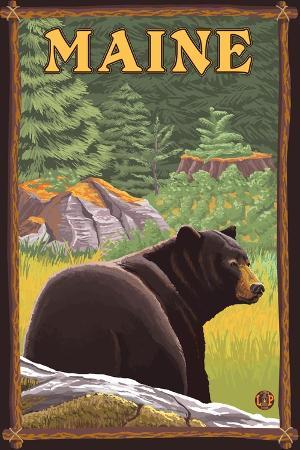 lantern-press-maine-black-bear-in-forest
