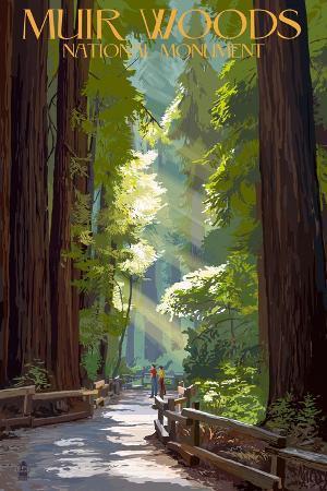 lantern-press-muir-woods-national-monument-california-pathway