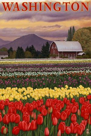 lantern-press-orca-and-calf-tulip-fields