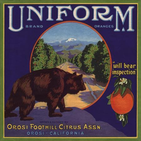 lantern-press-uniform-brand-orosi-california-citrus-crate-label