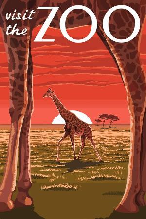 lantern-press-visit-the-zoo-giraffe-scene