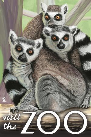 lantern-press-visit-the-zoo-ring-tailed-lemurs