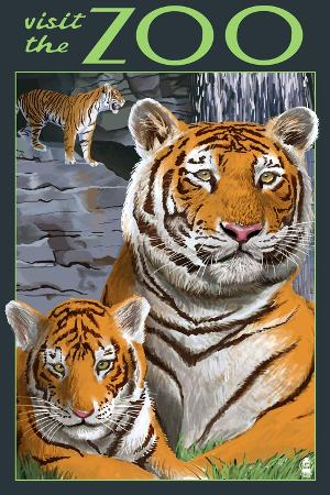 lantern-press-visit-the-zoo-tiger-family