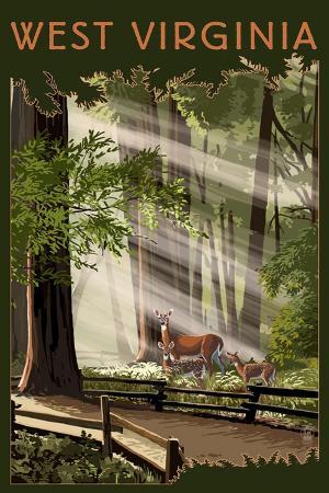 lantern-press-west-virginia-deer-and-fawns