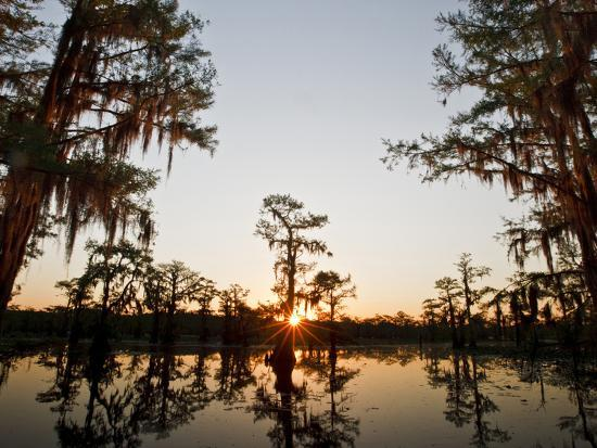 larry-ditto-caddo-lake-at-sunrise-marion-co-texas-usa
