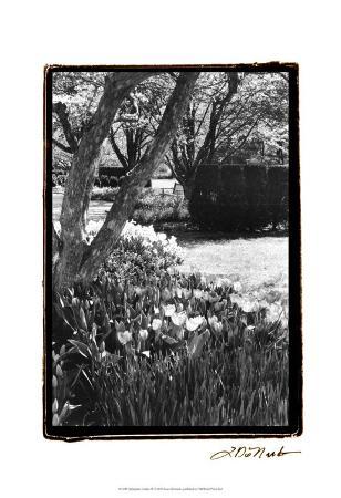 laura-denardo-springtime-garden-iv