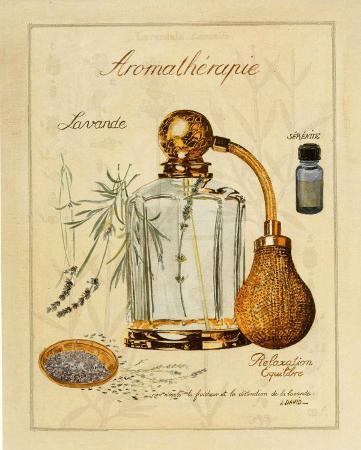 laurence-david-aromatherapie-lavande