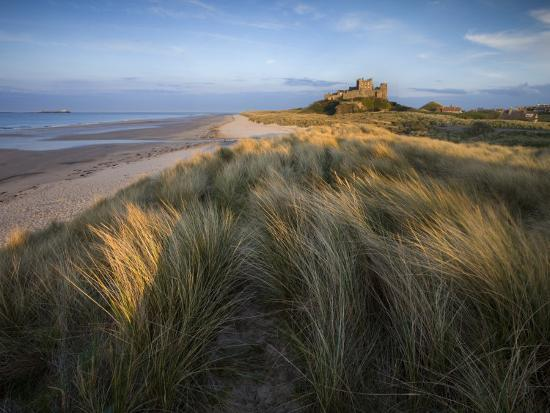lee-frost-looking-towards-bamburgh-castle-bathed-in-evening-light-from-the-dunes-above-bamburgh-beach