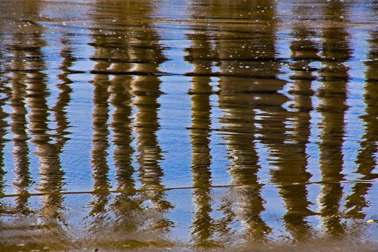 lee-peterson-pier-reflections-ii