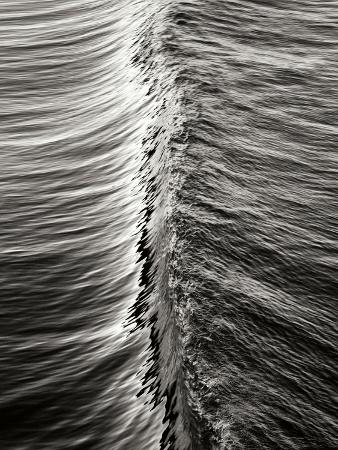 lee-peterson-wave-5
