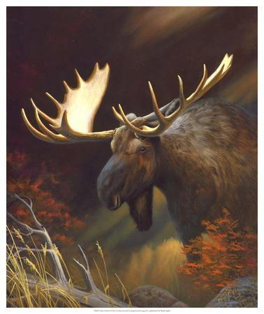 moose chatrooms 'putting the moose on the table' means talking about things that are difficult or uncomfortable the phrase has been used in management circles for years, and it was recently popularized in a book of that title by randall tobias, former ceo of.