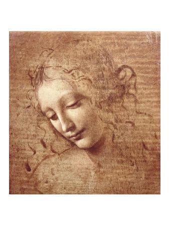 leonardo-da-vinci-female-head-la-scapigliata-c-1508