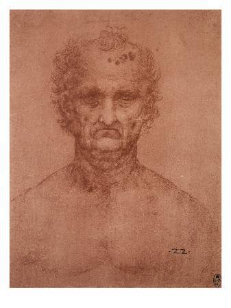 leonardo-da-vinci-head-of-an-old-man-drawing-royal-library-windsor
