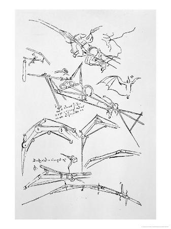 leonardo-da-vinci-sketches-of-flying-machines