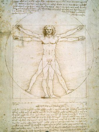 leonardo-da-vinci-vitruvian-man-c-1492