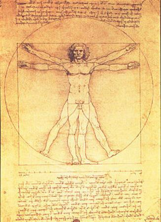 vitruvian man proportions of the human figure art print by leonardo da vinci at. Black Bedroom Furniture Sets. Home Design Ideas