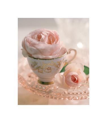 lina-ricci-pale-pink-ii