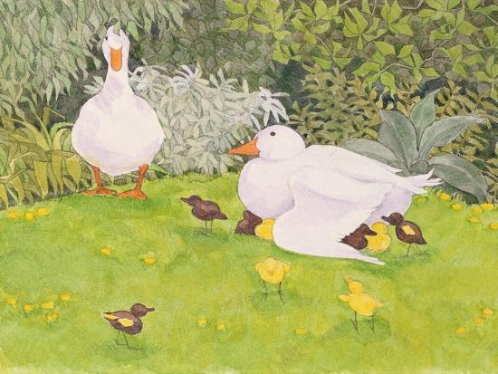 linda-benton-ducks-and-ducklings