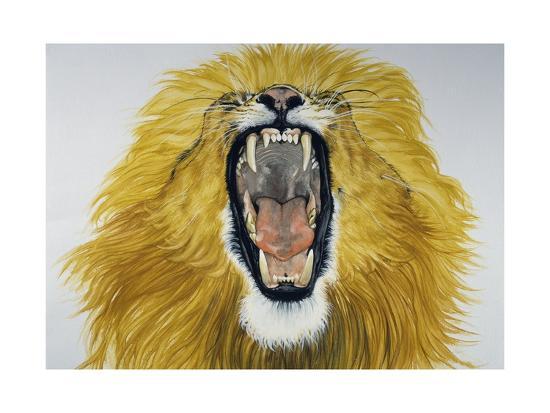 lion-phantera-leo-felidae