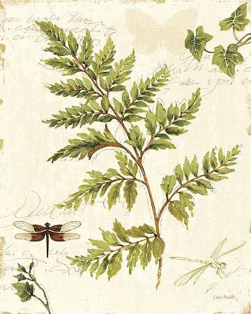 lisa-audit-ivies-and-ferns-i