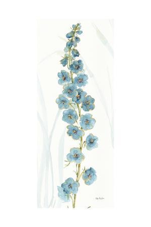 lisa-audit-rainbow-seeds-flowers-vi