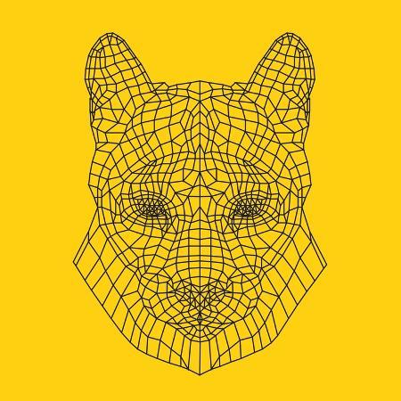 lisa-kroll-mountain-lion-yellow-mesh