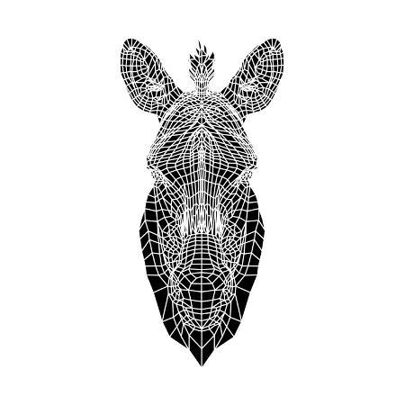 lisa-kroll-white-zebra-mesh