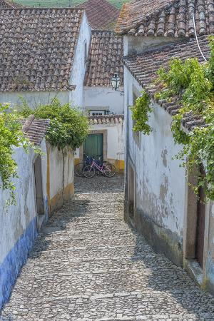lisa-s-engelbrecht-europe-portugal-obidos-cobblestone-steps