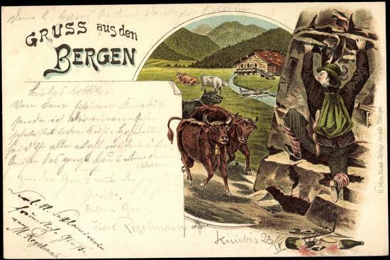 litho-gruss-aus-den-bergen-zerbrochene-weinflasche-mann-fluechtet-vor-kuehen
