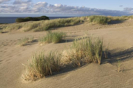 lithuania-klaipeda-county-curonian-spit-beach