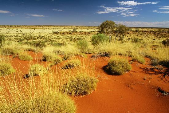 little-sandy-desert-western-australia