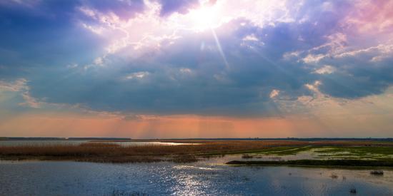 liviu-pazargic-summer-sunset-over-the-tranquil-lake