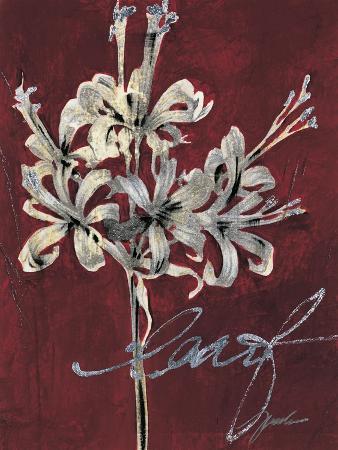liz-jardine-cabernet-blossoms-i