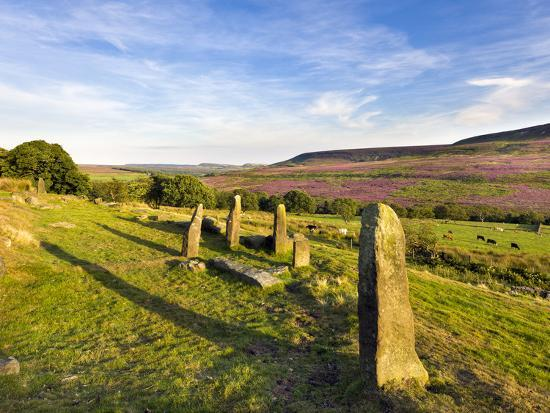 lizzie-shepherd-standing-stones-on-the-north-yorkshire-moors-with-arden-great-moor-in-the-distance-yorkshire-engl