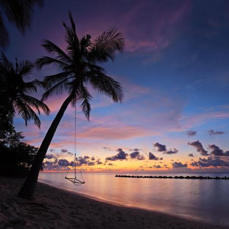 ljsphotography-a-view-of-a-beach-with-palm-trees-and-swing-at-sunset-kuredu-island-maldives-lhaviyani-atoll