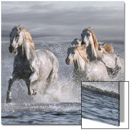 llovet-horses-running-at-the-beach